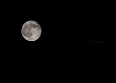 7.12.2014: Supermoon (jbone66 (Jay B)) Tags: sky moon night dark circle star orb craters crater round planet supermoon