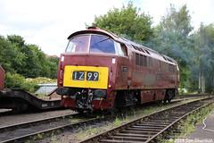 D1062 Western Courier 13th July 2014 SVR Bridgnorth (Ian Sharman 1963) Tags: heritage station train diesel engine july railway loco class severn valley western locomotive courier 13th 52 svr 2014 kidderminster bridgnorth d1062