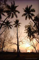 RAAF Camp (Micartttt) Tags: sunset silhouette malaysia penang raaf butterworth royalaustralianairforce micarttttworldphotographyawards micartttt
