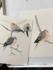 Snow Day for Mourning Doves (Handwork Naturals) Tags: edenscovillehart