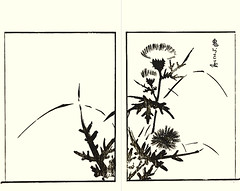 Ghost thistle (Japanese Flower and Bird Art) Tags: flower ghost thistle cirsium nipponense asteraceae gabimaru gessai ukiyo woodblock picture book japan japanese art readercollection