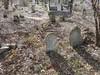 20170320_152151 (h.alfatli) Tags: bg 2017 mezar kabristan neofit bozveli bozvelievo alfatlı köyü momçilgrad