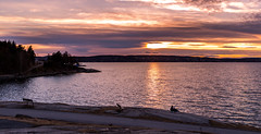 Sunset watchers (abdurj) Tags: water sunset dawn landscape evening dusk beach travel sea outdoors seashore sky reflection sun lake ocean nature daylight seascpae cloud clouds oslo norway fjord oslofjorden hvervenbukta bay