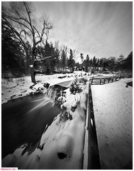 The falls on Stony creek (DelioTO) Tags: 4x5 adoxchs100 blackwhite d23 desaturated february landscape natparks ontario pinhole rural trails winter woods autaut