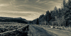 who knows where the road leads (coffee robbie..PROTECTED BY PIXSY) Tags: tokina1116mmf28 nikond5100 nikon landscape blackandwhite splittone comeraghmountains ireland eire munster outdoor mountains