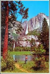 "Postcard of ""Yosemite Falls."" Colorscope Photo Print B10398. Published by Scope Enterprises (lhboudreau) Tags: postcard postcards colorphoto outdoor outdoors vintagepostcard nob10398 b10398 postcardb10398 postcardnob10398 cliff cliffs rock rocks rockwall yosemitevalley yosemite fall falls waterfall waterfalls mercedriver river water yosemitefalls yosemitefall nationalpark yosemitenationalpark california upperfall upperfalls lowerfall lowerfalls tree trees scopeenterprises colorscope photoprint colorscopephotoprint valley landscape bluesky"