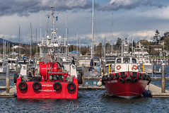 Anacortes Marina (NikonDigifan) Tags: boats marina anacorteswashington pugetsound ocean pacificnorthwest niksoftware colorefexpro nikond750 tamron150600g2 mikegassphotography