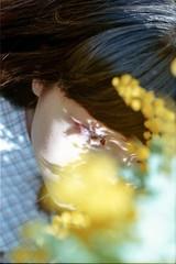 mimoza girl YOBI(BARK in STYLE) (eripope) Tags: spring film mimoza yellow girl female model tokyo canonae1 fujifilm canon flower green nature