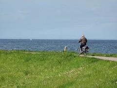 Lonely cyclist (sander_sloots) Tags: fietser dijk oosterschelde zeeland cyclist dike zeelandbrug bridge