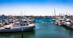 San Diego-177 (marnipatterson) Tags: harborisland sandiego southerncalifornia