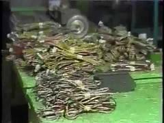 Goulart de Andrade mostrando a produção de videogames 1983 (portalminas) Tags: goulart de andrade mostrando produção videogames 1983