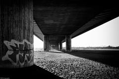 under the bridge (fhenkemeyer) Tags: ruhrgebiet nrw beeckerwerth duisburg bridge bw shadows silverefexpro2 canoneos70d brücke underthebridge graffiti monochrome