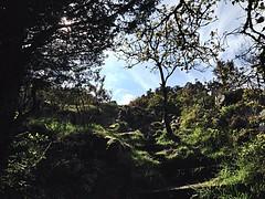 (milianmonbrun) Tags: blue sky green stone