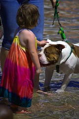 Greetings (swong95765) Tags: cute greet greeting water wet dog canine pet animal kid girl young meet leash