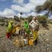 Somaliland_Mar17_3314