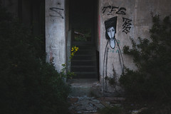 Spring is here (matej.duzel) Tags: pula croatia istria spring flower yellow cinematic graffiti leica panasonic lumix 25mm dusk abandoned old building dark atmosphere green scary stairs