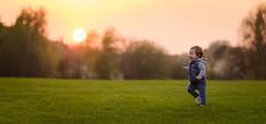 Sunset Run (James W Atkins) Tags: sunset boy toddler sun oldfarmpark park field grass green summer spring warm hot heat baby child photography photoshoot