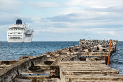 Costanera de Punta Arenas (Pablo Rodriguez M) Tags: chile puntaarenas costanera muelle pier cruise crucero norwegiansun ship ave bird