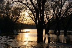 Floodwater sunrise