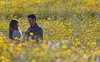 Flower (kalosburcani) Tags: couple realmonte agrigento sicily sea wedding rural nature flower