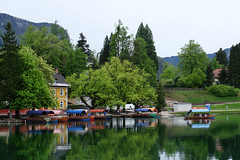 DSCF1909 (costin_mihai_iasi) Tags: bled morning cloudy cold slovenia april boats green