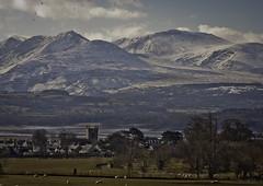 Beaumaris and beyond  (Explored 21/4/16) (markrd5) Tags: wales anglesey snowdonia beaumaris castle farmland sheep snow