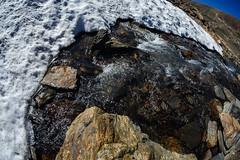 Milky glacier melt emerges from below the snow (speedcenter2001) Tags: sierranevada highsierra fisheye 16mmf35ai california mountains parkerpass yosemite yosemitenationalpark wilderness anseladamswilderness sierra