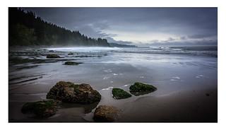 Misty Morning on Sandcut Beach