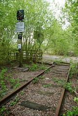 E.A.R Hams Hall (Sam Tait) Tags: b england station hall track day crossing power c over rail railway sunny line r level e disused siding derelict grown hams 2014 a