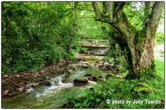 _DSC5662 (Julio Tomillo) Tags: espaa naturaleza nature nikon asturias d5100