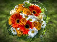 flowers_2014