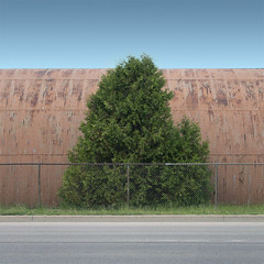 Industrial (Jeffrey-Paul) Tags: road blue roof red sky orange brown sun white plant ontario canada cold building tree green art texture abandoned grass metal contrast photoshop fence garden square paul photography photo bush post bright parking grow center minimal storage line jeffrey simple barrie minimalist mateus minimum lessismore