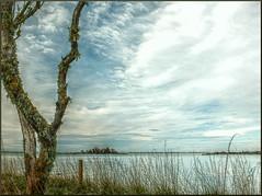 Te Waihora {EXPLORE} (Lyndon (NZ)) Tags: newzealand christchurch lake nature landscape fuji gimp canterbury southisland hdr cloudscape xs1 week21theme fujifilmxs1 52weeksthe2014edition week212014 weekstartingwednesdaymay212014