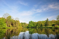 pure (christiaan_25) Tags: morning trees light sky lake reflection water clouds landscape mirror flat explore 135 mortonarboretum 294 lakemarmo may262014