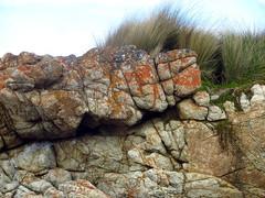 Friendly Beaches, Freycinet Peninsula (Set of13) (Lesley A Butler) Tags: australia coastal granite tasmania grasses lichen freycinetpeninsula friendlybeaches