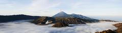Mt Bromo (MaNgO22) Tags: travel mountain sunrise canon indonesia volcano 5d lanscape surabaya bromo mtbromo thebestshot bromosunrise canon5dmarkiii mtbotak