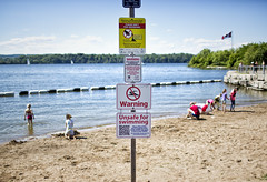Water Pollution (Metro Tiff) Tags: park nature water swimming warning bay unsafe waterfront harbour no environmental pollution poop algae waterfowl bacteria levels bluegreen polluted recreational hfg 2014 hamiltonwentworth