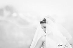 Wedding Hi Key (Nathan Greninger) Tags: wedding white black mountains 50mm back looking veil gown f18 hikey