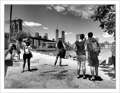 The View (Eddie Hales) Tags: blackandwhite brooklyn mono manhattan tourists brooklynbridge eastriver visitors oneworldtradecenter