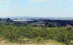 Sunnycrest Orchards Wallace Lane, Glenroi NSW