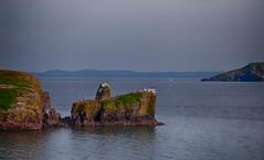Port de Grave, Newfoundland (John Strung) Tags: canada newfoundland portdegrave newfoundlandandlabrador roadtrip2014