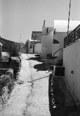 l'habitant (asketoner) Tags: street houses shadow summer silhouette cat island greek daylight hill greece heat walls thirasia