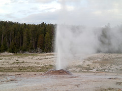 Pink Cone Geyser in eruption (7:41-8:13 PM, 3 June 2014) 14 (James St. John) Tags: pink hot volcano spring cone group basin springs yellowstone wyoming geology lower geyser eruptions erupt eruption hotspot erupting geysers