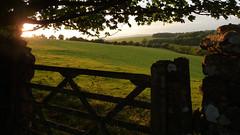 Sunlit fields (GillWilson) Tags: sunlight cumbria fields birkriggcommon