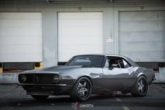 67' Camaro | VL550
