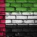 National Flag of United Arab Emirates on the Brick Wall