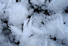 more ice (helena.e) Tags: helenae ice is frost winter vinter snö macro cold kallt