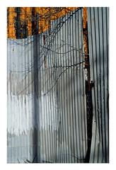 (Michael Raymond Lund) Tags: fujichrome provia 100f slide film e6 color photography nyc queens far rockaway urban slr zuiko 50mm olympusom4ti
