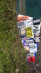 Combo (artporn_) Tags: smile 365 yome vmd ksf koile huzer skc uns tupaktv 720 mal1 malin720 malin dva bat fenek mca nekfeu ramos brinks tsf tsfcrew collage sticker adhesif touparcacolle encrédanslarbre panneau incrustededans lanature comasoundcartel csc substyle noz pics picture picsoftheday