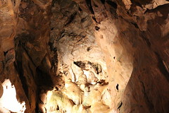 Cheddar Caves (Roy Richard Llowarch) Tags: cave caves goughscave coxscave cheddar cheddargorge somerset cheddarsomerset cheddarcaves cheddargorgesomerset stalagmites stalactites geology mendips mendiphills limestone underground sandstone parks color colour colourful colorful red blue pink orange grey stoneage stoneageman nationaltrust thenationaltrust nationalparks nationalpark england englishheritage englishhistory britishhistory britishheritage british britons history historic historical historicengland historicbritain beauty beautiful nature naturalhistory naturalbeauty rock rocks tunnel tunnels rockformations prehistoric prehistoricman